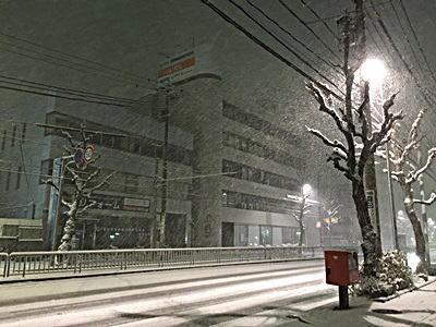 名古屋今年初積雪(2016年1月)