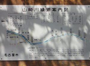 山崎川に桜花見