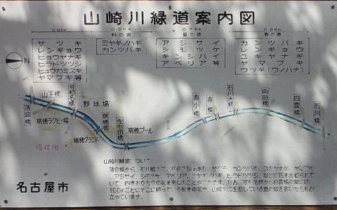 山崎川に桜🌸花見(2014年4月3日)