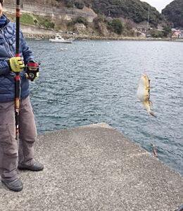 常神半島にカレイキス狙い釣行(2016年3月)