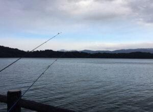 20190101敦賀で釣り